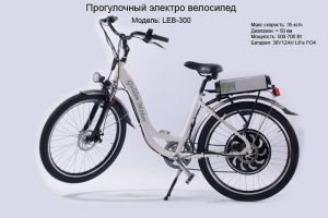 Электровелосипед Golden Motor LEB-300